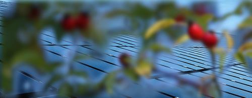 solarheizung warmwasserbereitung und heizen mit der sonne ralf kr mer solartechnik. Black Bedroom Furniture Sets. Home Design Ideas